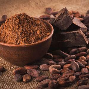 Cacao en Polvo 100%